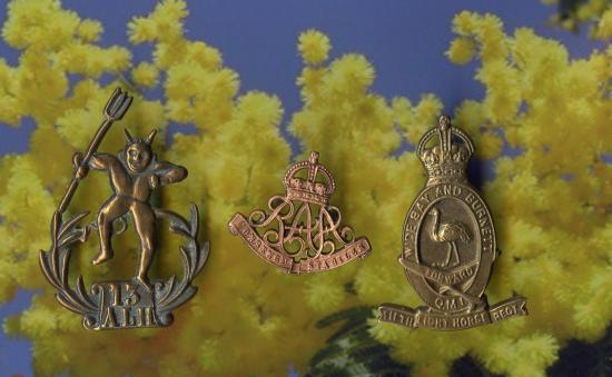CAP BADGES .