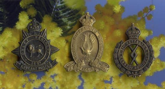 CAP BADGES.